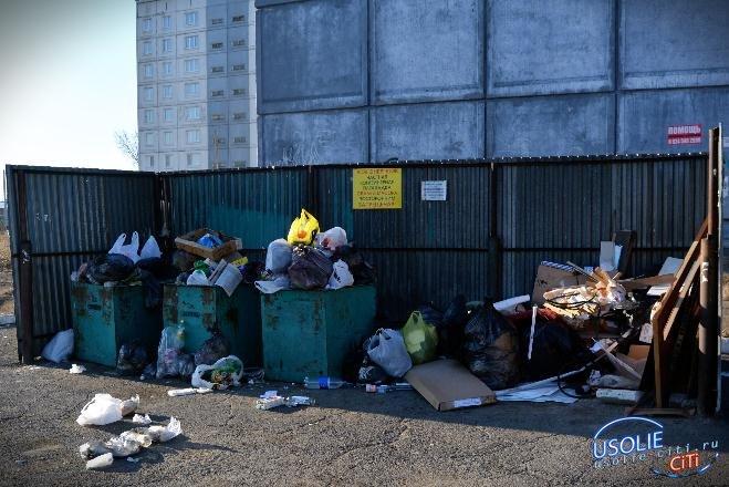 Пока председатель спал, в Усольском ТСЖ украли мусорные баки