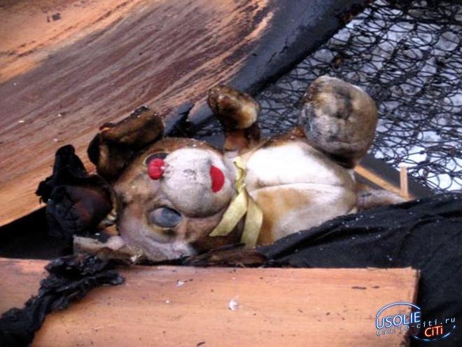 Усольские следователи возбудили уголовное дело по факту гибели пятерых человек на пожаре