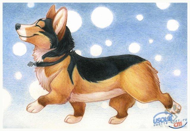 Такие разные собаки! Конкурс рисунков прошел в Белореченском в честь хозяйки года