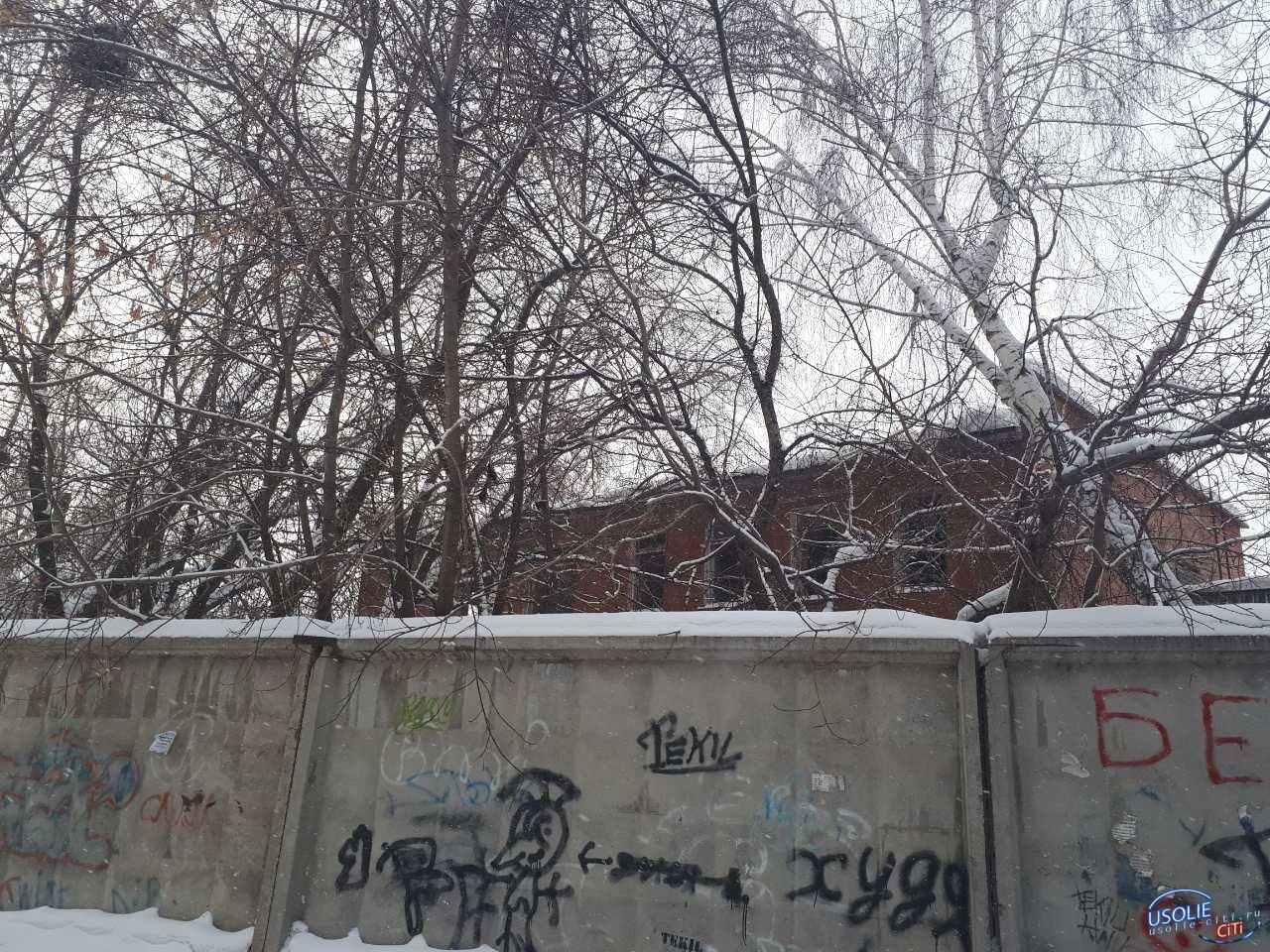 Здание бывшего детского сада в Усолье выставлено на продажу