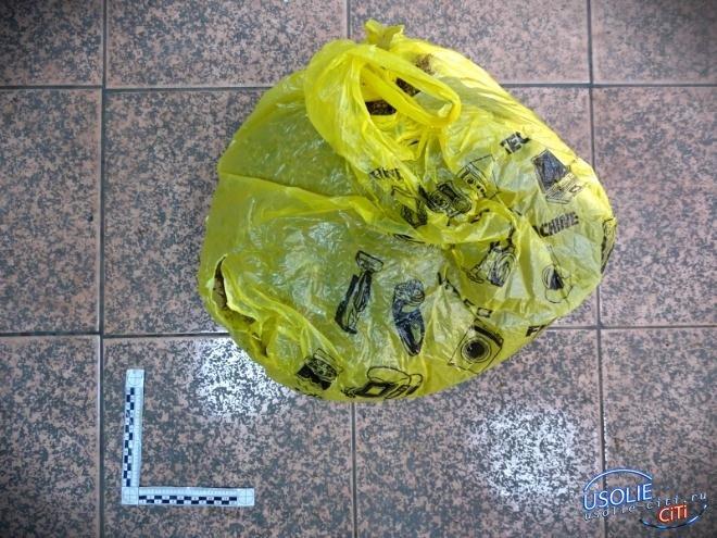 У двоих усольчан изъяли два килограмма марихуаны на иркутском вокзале