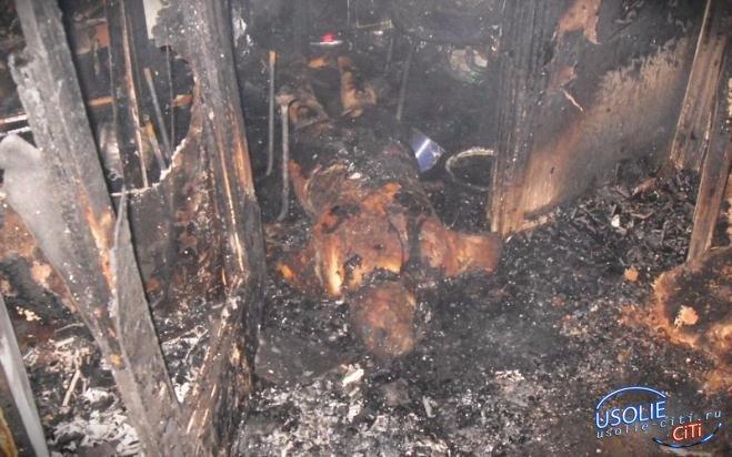 Трагедия в Усолье.  Во время пожара погиб мужчина
