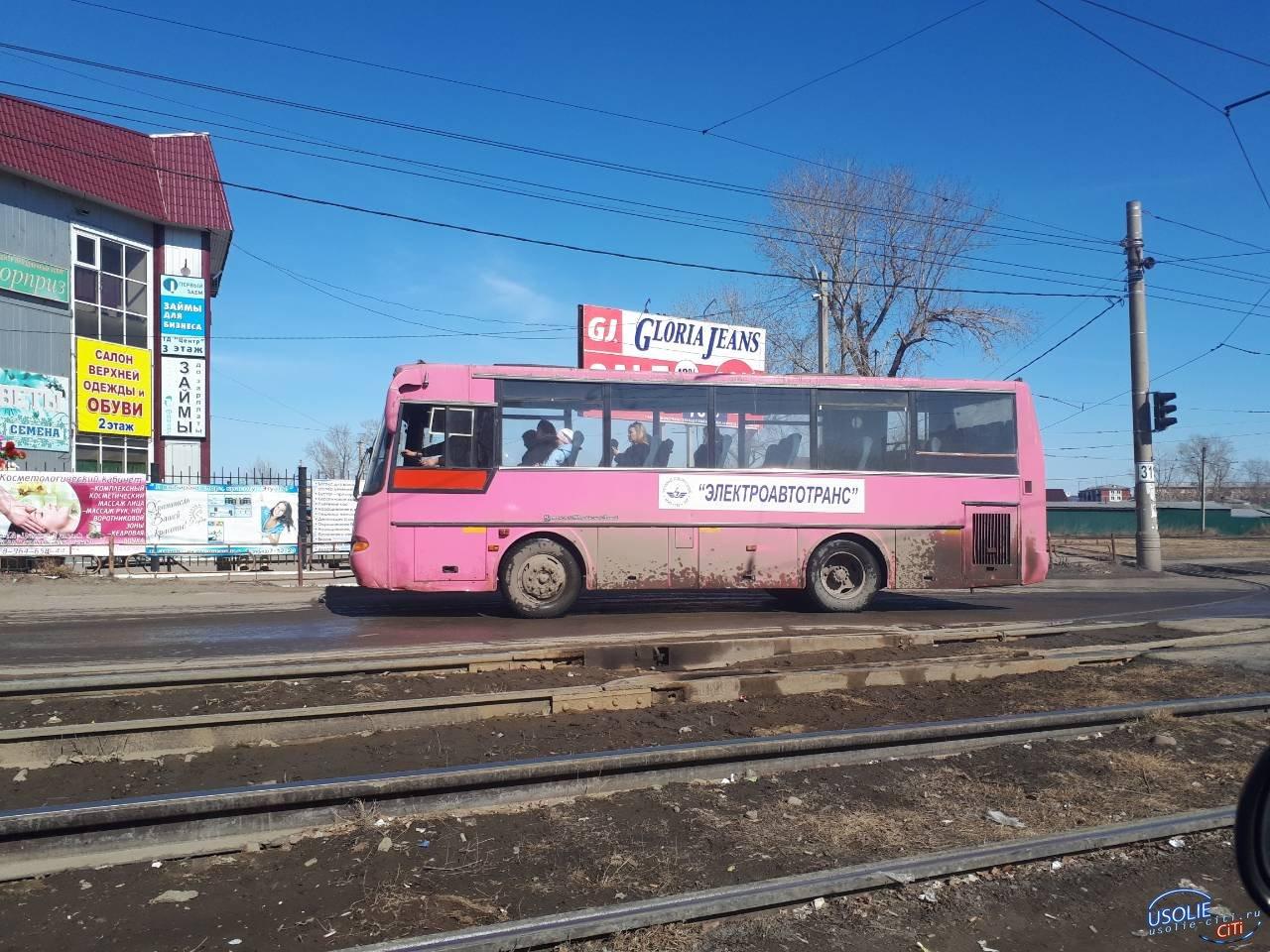 Розовая «Аврора» снова на дорогах Усолья