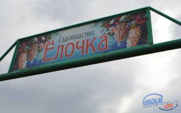 Сегодня, 16 апреля в Усолье началась выдача проездных билетов до садоводств