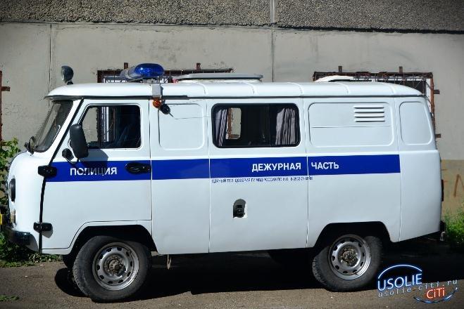 Усольские сыщики задержали двоих 18-летних воров
