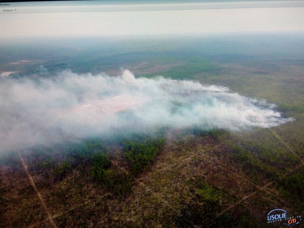 В Усольском районе вызвали дождь для тушения лесного пожара