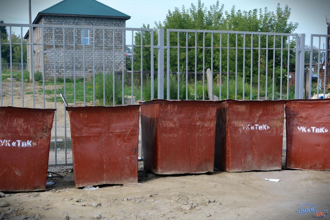 В Усолье вводится оплата за услуги по сбору и вывоза мусора