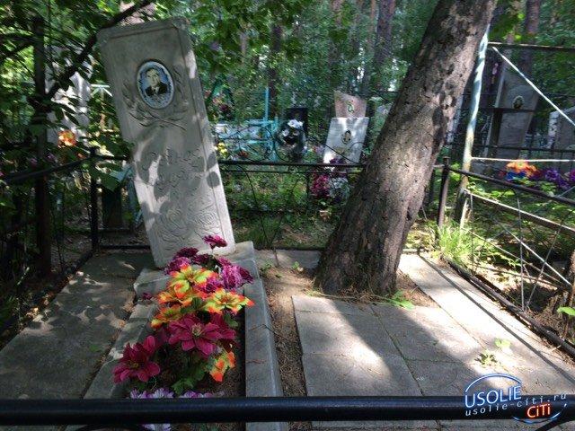 Могилу усольского ветерана войны может разрушить большое дерево