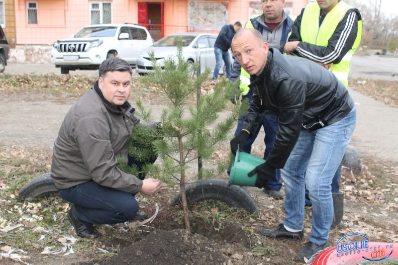 Двор преобразился - инициатива депутата Вадима Кучарова