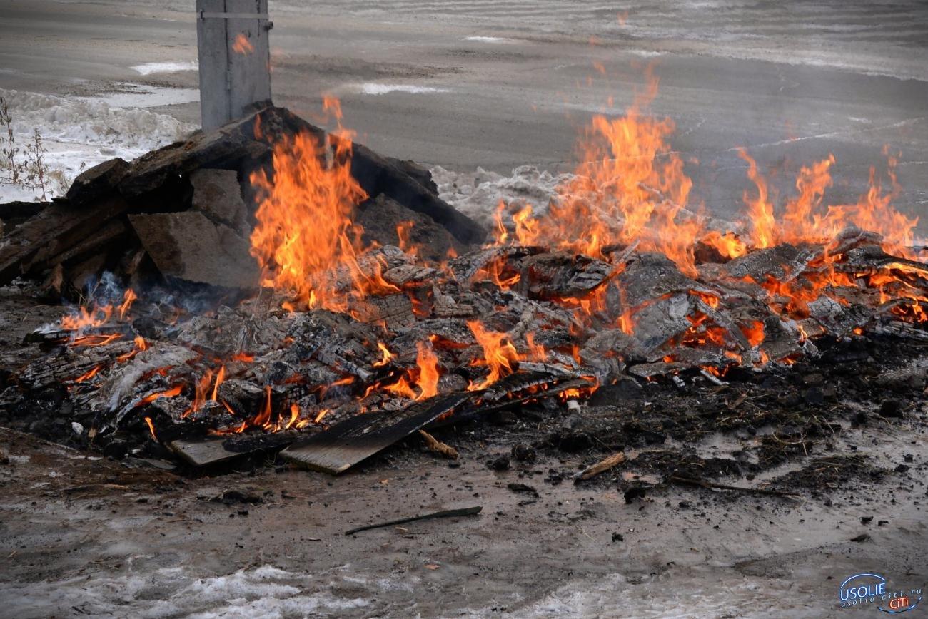 Усольский бомж сгорел у костра