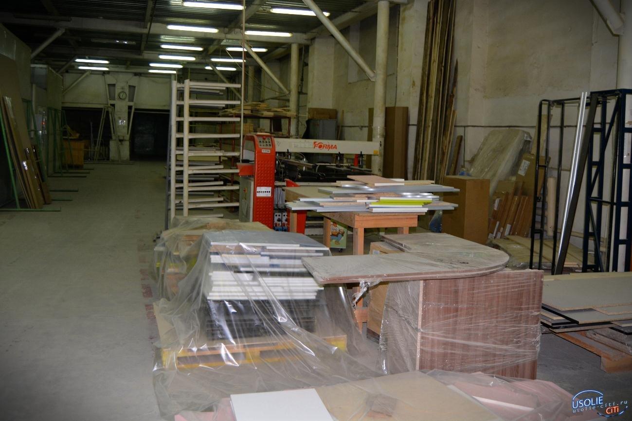 Два завода, по производству горного оборудования и матрасов, появятся в Усолье-Сибирском