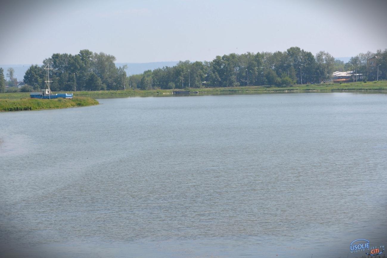 В Усолье на озере Молодежном появится новая стела