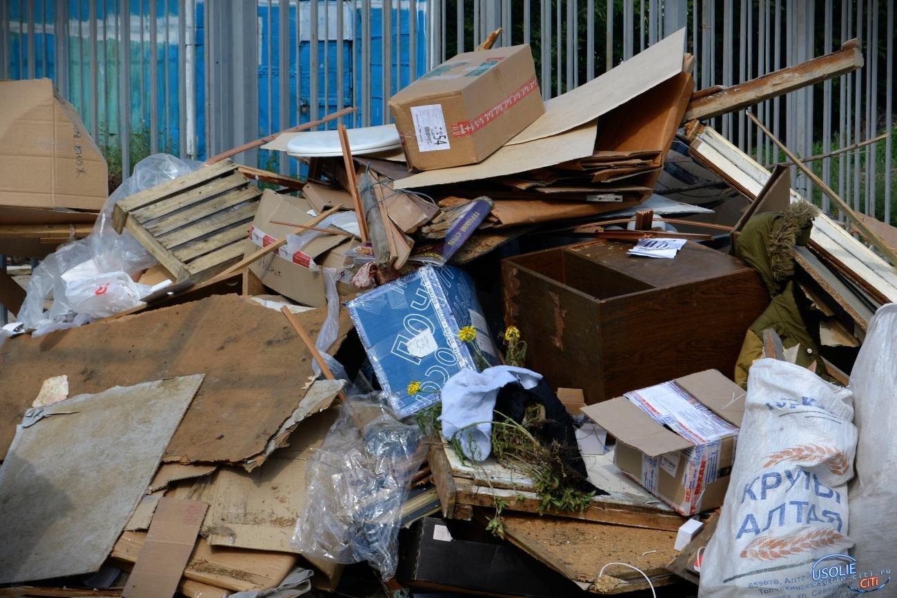 Усольчане взбунтовались против установки мусорных контейнеров