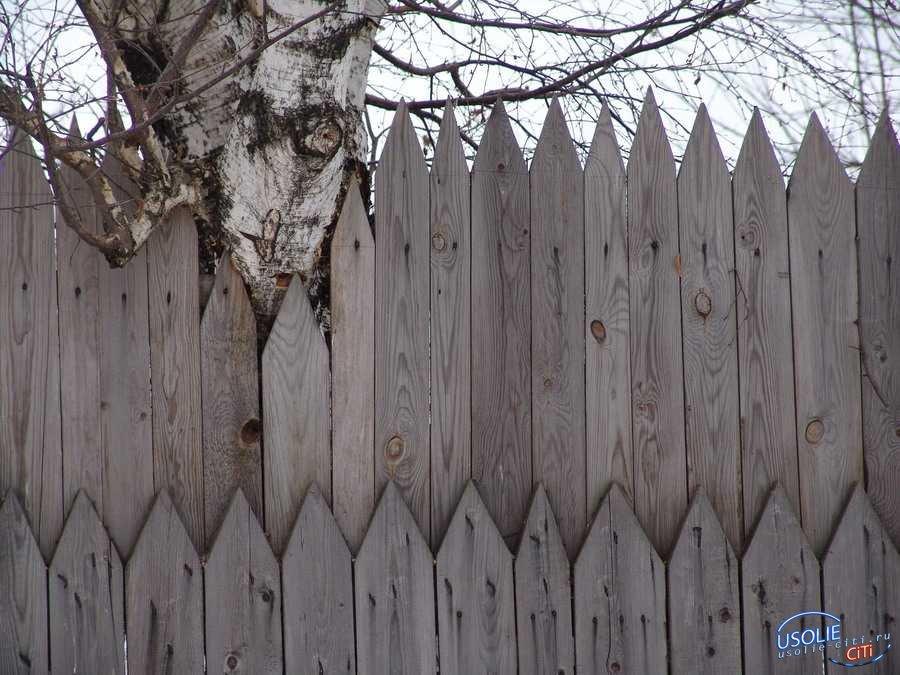 Усольчанка нашла своего сына повешенным на заборе