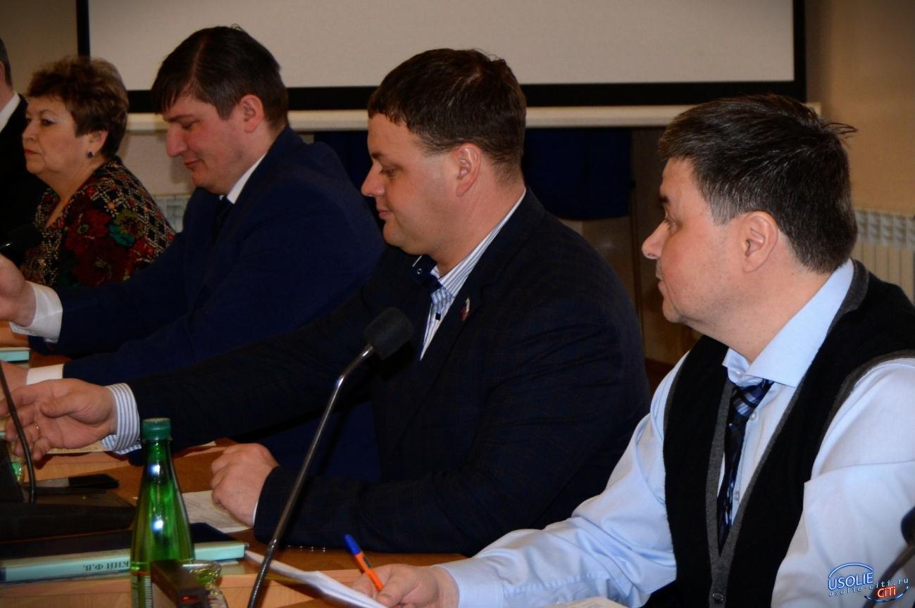 Более 1,3 миллиона рублей будет направлено на ремонт дорог к усольским садоводствам