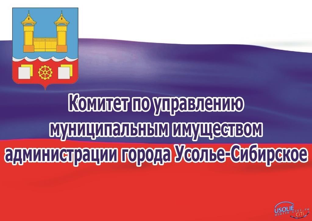 КУМИ администрации города Усолье-Сибирское продает земельные участки под ИЖС
