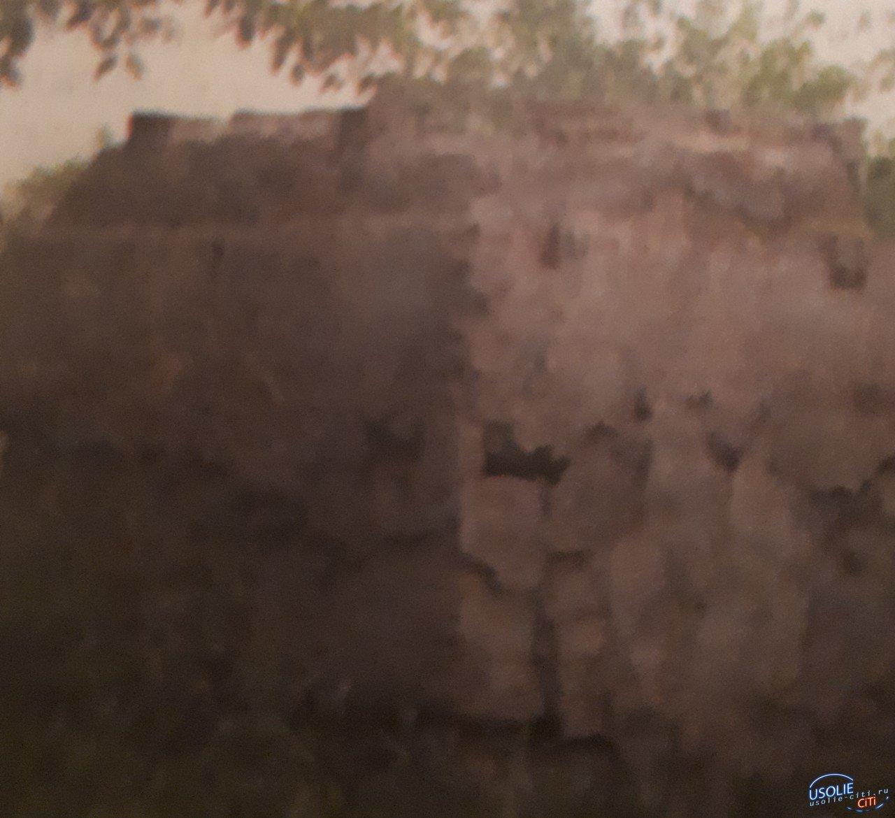 Лев «сбежал» из Усолья, а постамент остался