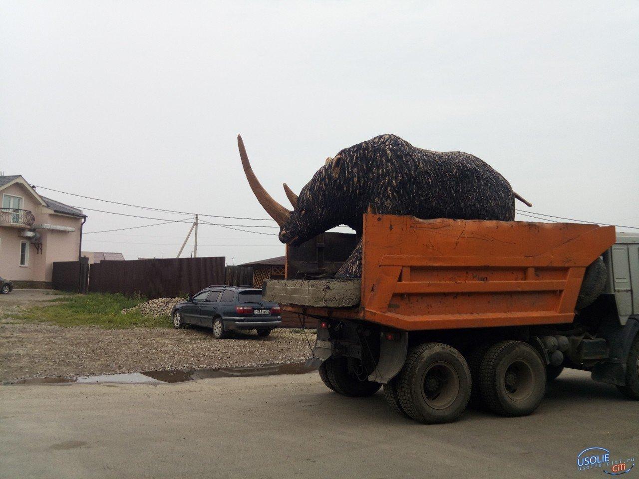 Предприниматель Усольского района установил в Мальте шерстистого носорога