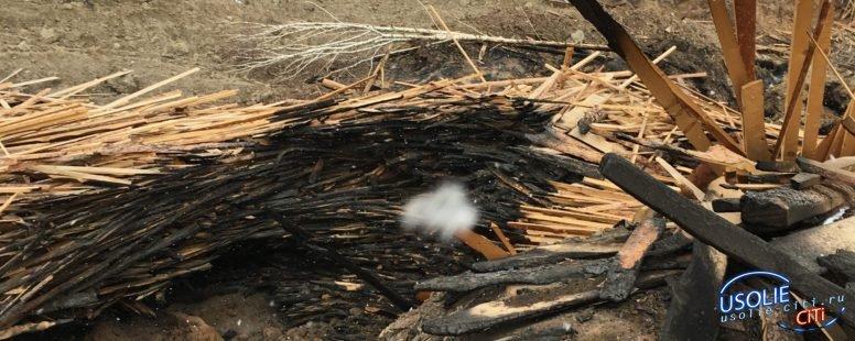 Три деревобрабатывающие предприятия в Усолье наказаны прокуратурой