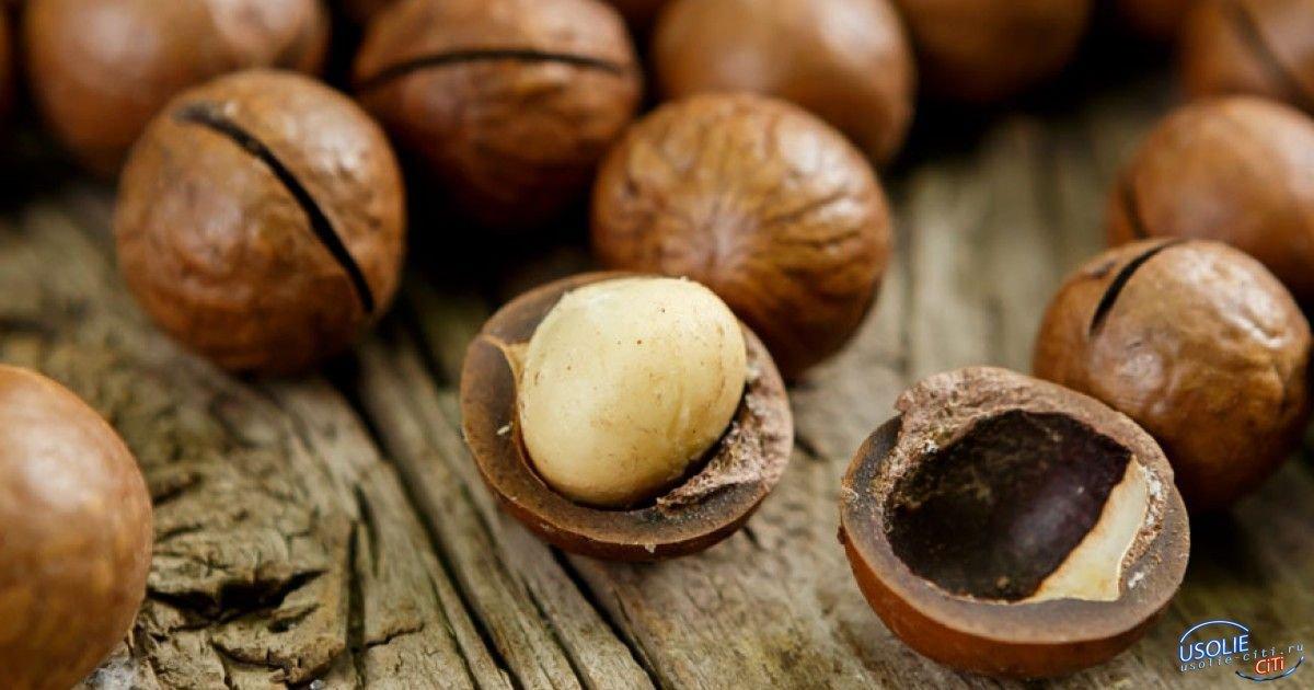 В Усолье орехи из Китая продавали под видом австралийских