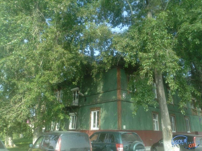 Здание администрации Усольского района выставлено на продажу