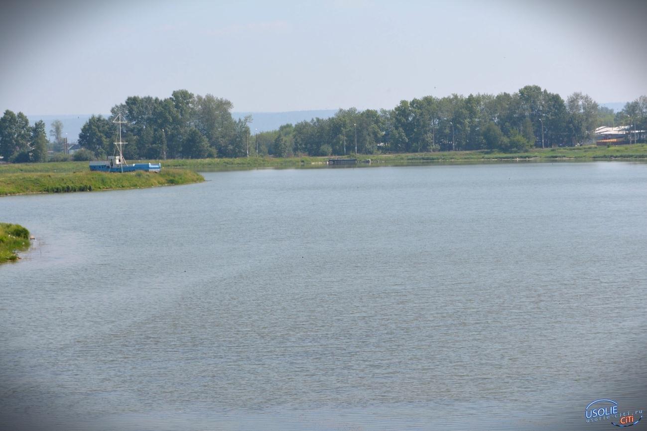 1107 усольчан решали судьбу городского озера