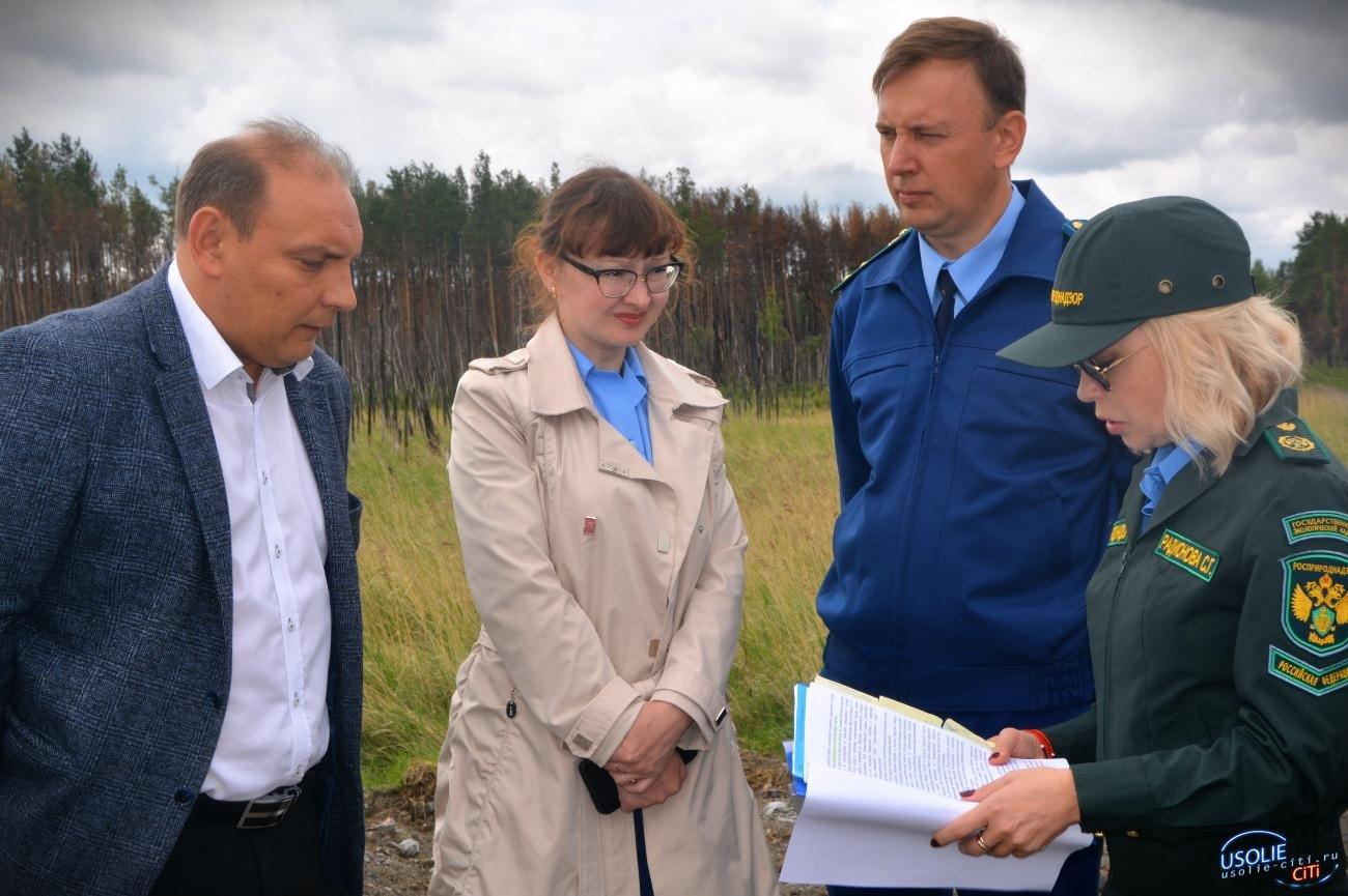 Подрядчика дляликвидации ртутного загрязнения вУсолье  выберут в2020 году
