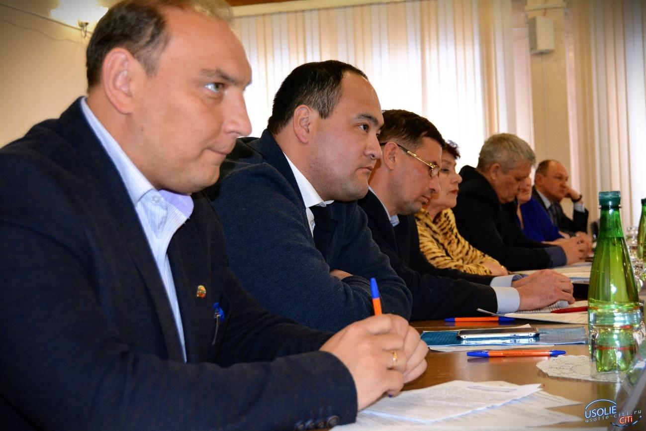 Что тормозит демеркуризацию в Усолье: Мэр, депутаты, представители области обсудили проблему