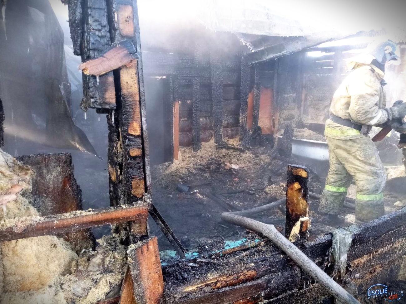 Задохнулись во сне: Пожар в Усолье унес жизни двух человек