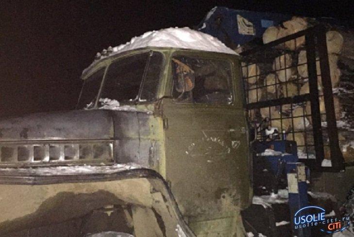 Заблокировали выезд: С незаконной вырубкой леса борются в Усольском районе