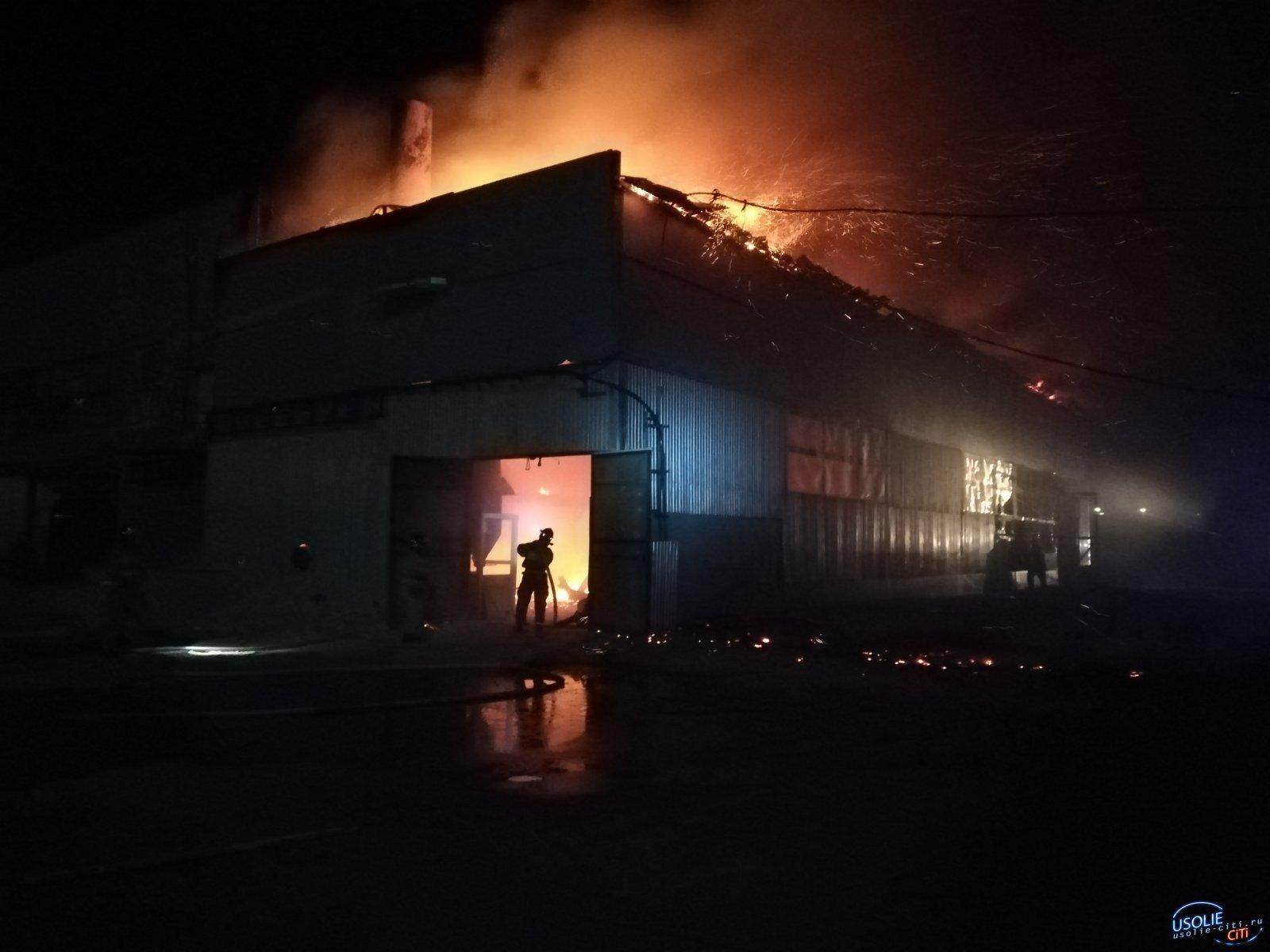 В Усолье огонь уничтожил здание предприятия - резидента