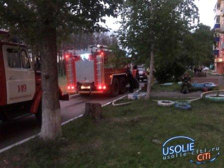 В Белореченском Усольского района ребенок погиб на пожаре