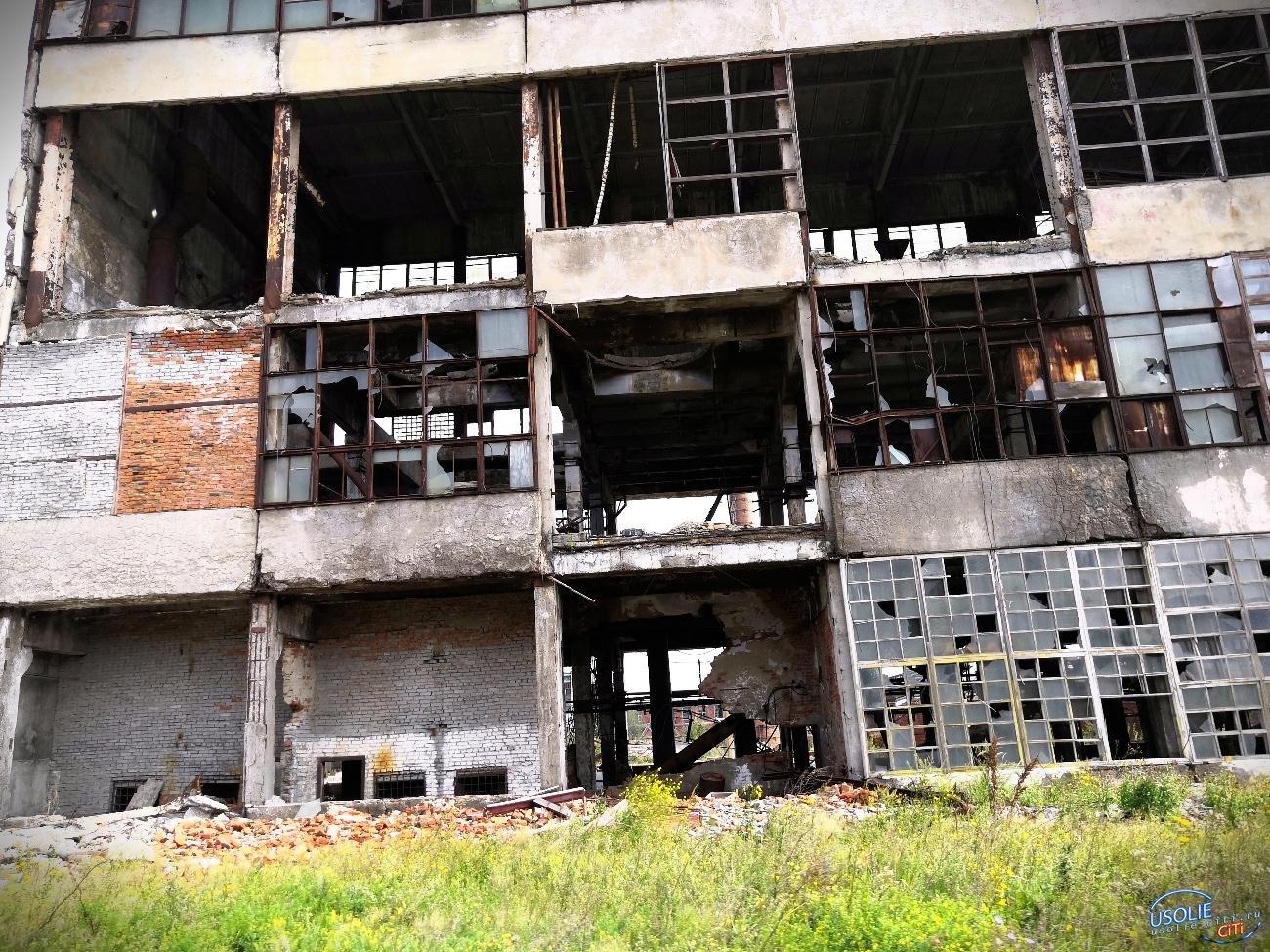 Опасно ли: В Усолье построят завод по переработке  отходов