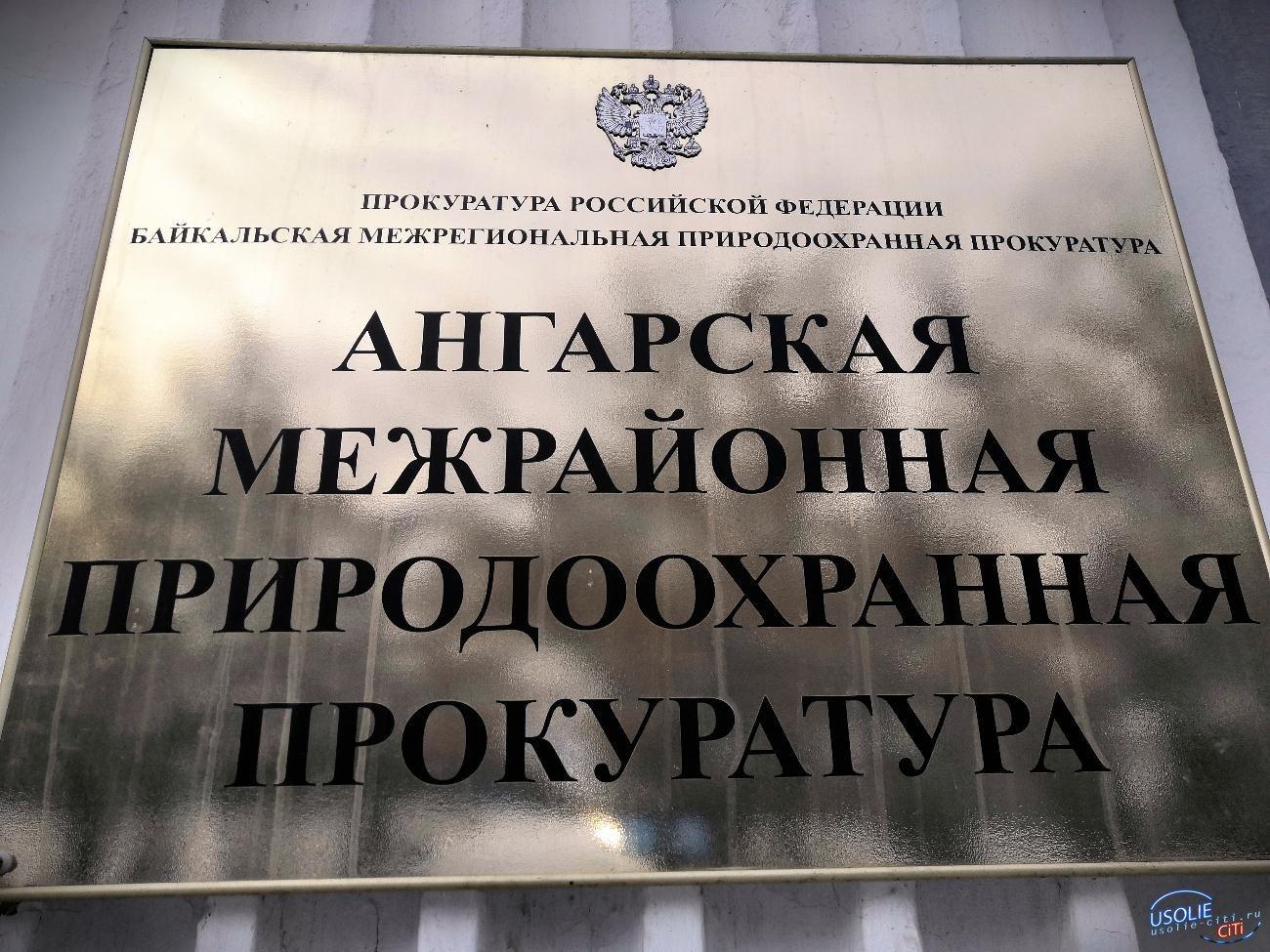 В Усолье незаконно сносили объекты на Химпроме