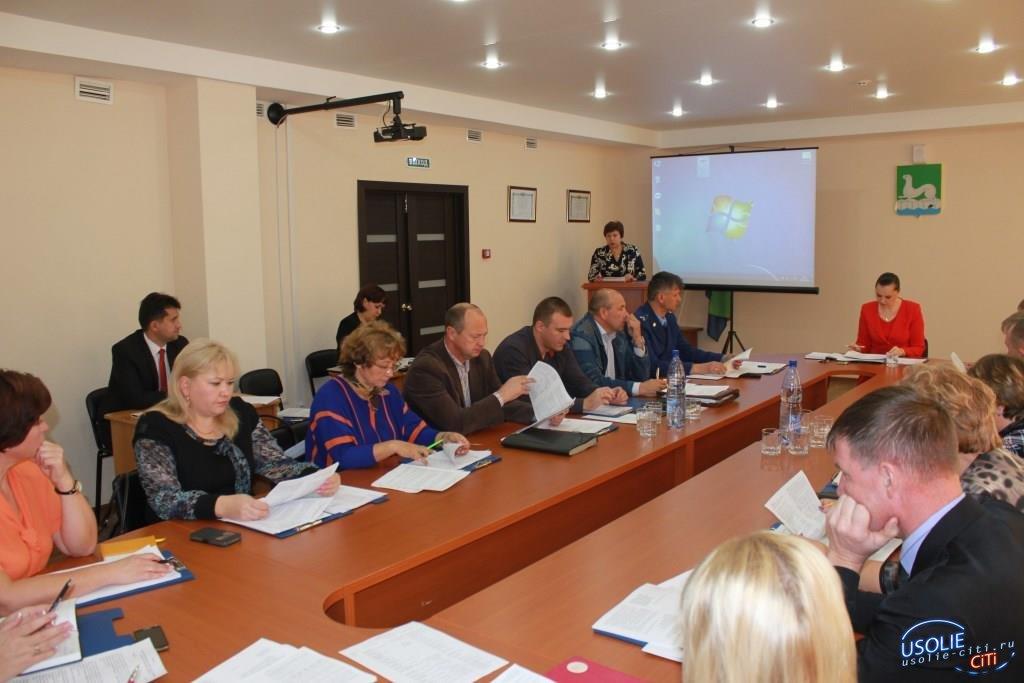 Депутаты  Думы Усольского района одобрили изменения в бюджет