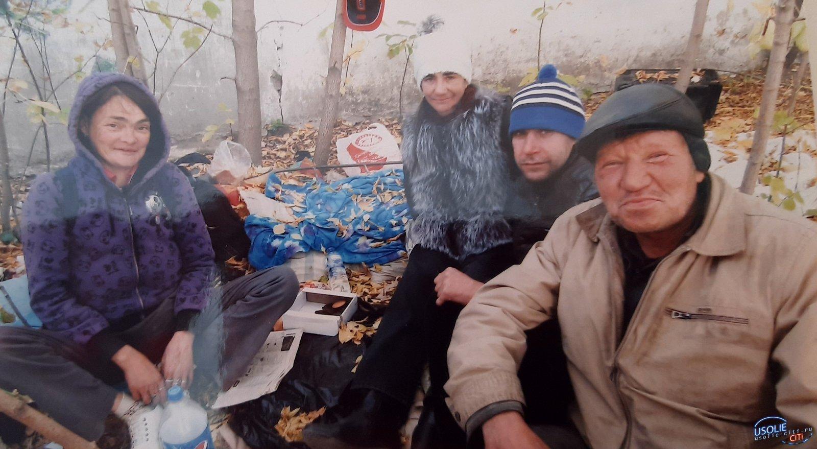 Печально я смотрю…Бездомные в Усолье