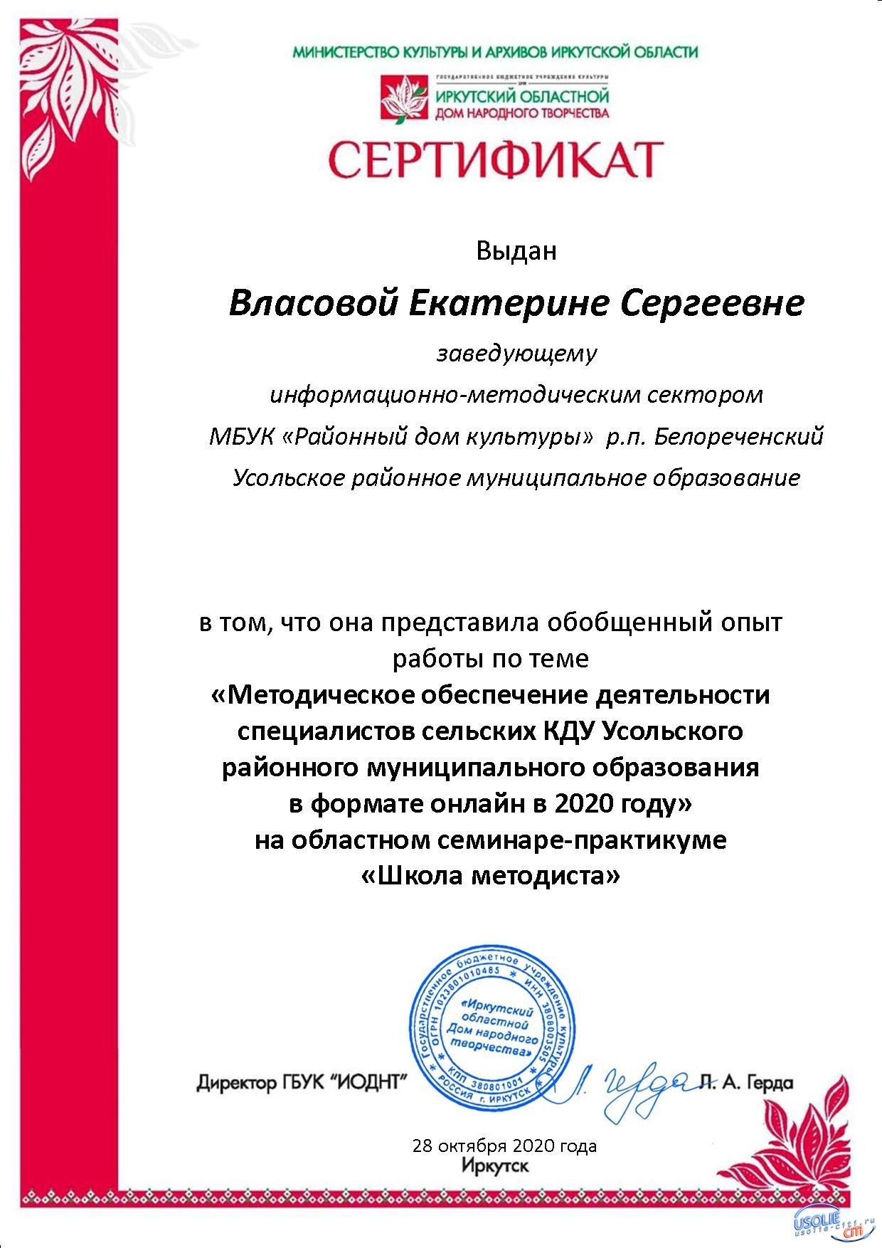 Опыт дистанционной работы Усольского района представили на областном семинаре практикуме