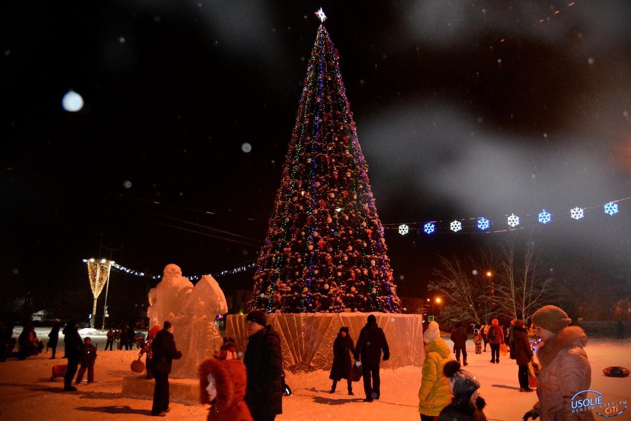 Когда в Усолье начнут убирать новогоднюю елку?