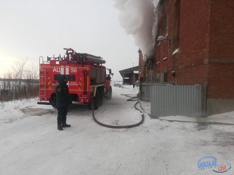 Пожар  на территории фанерного завода в  Усолье