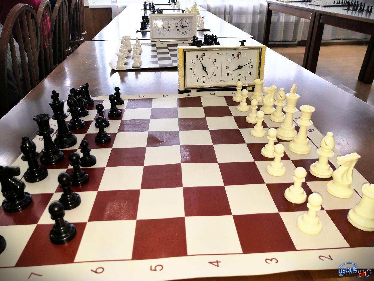 Усольские шахматисты стали лучшими