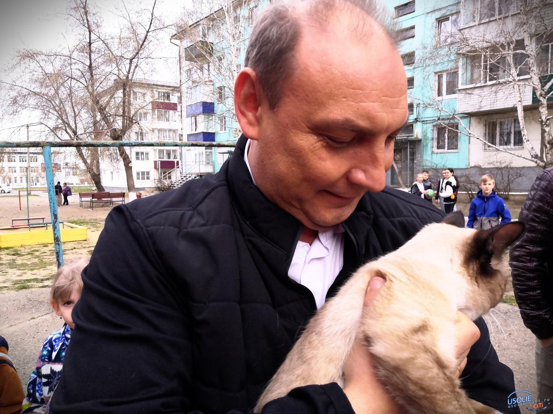 Мэр Усолья спас кошку