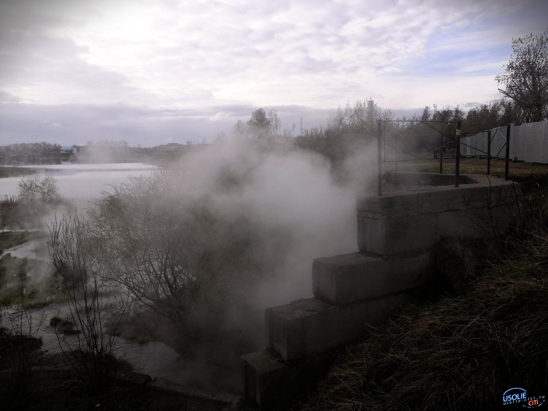 Все на уху: Кипяток пустили в озеро Молодежное в Усолье