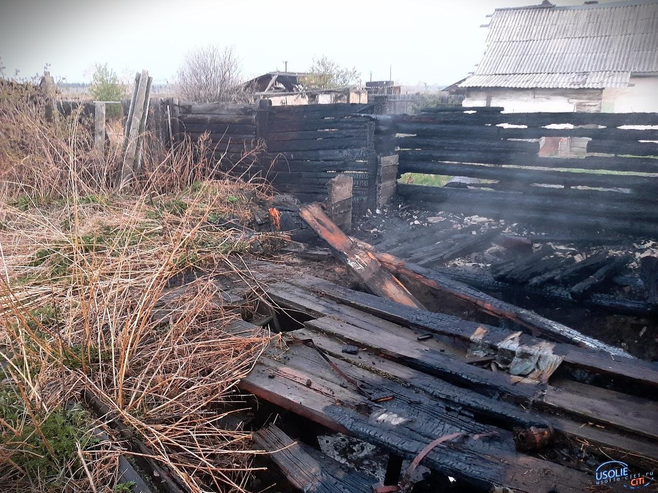 Дом горел по улице Полевой на станции Тельма Усольского района