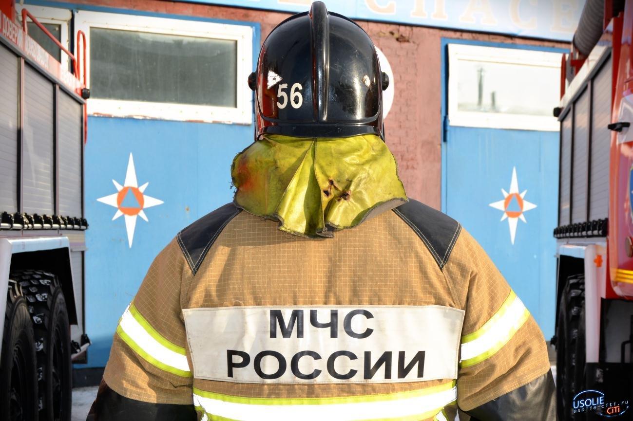 В Тельме Усольского района загорелся автомобиль
