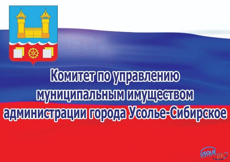 КУМИ Усолья  проводит электронный аукцион по продаже муниципального имущества