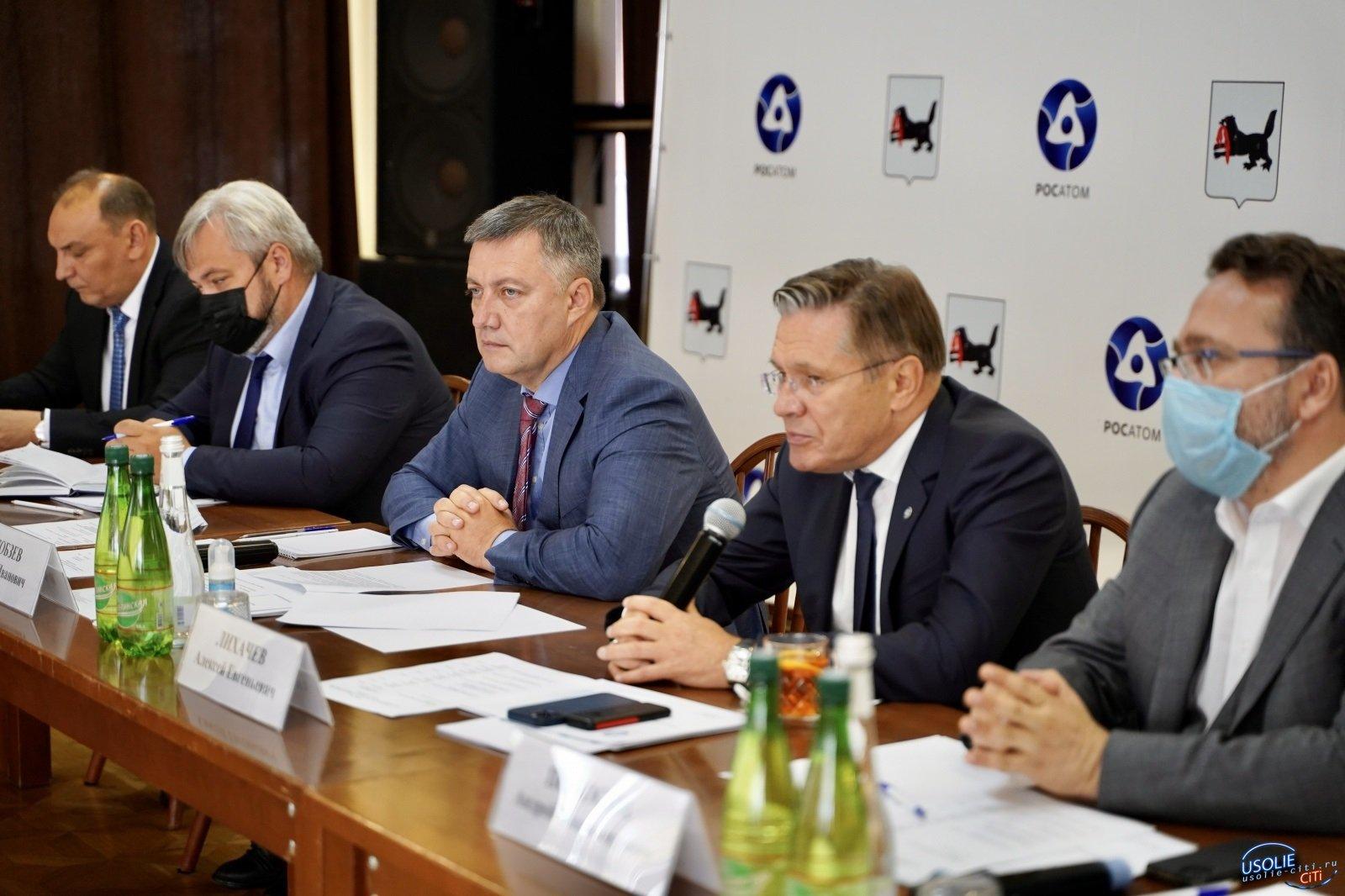 Игорь Кобзев и гендиректор Росатома поговорили о развитии Усолья-Сибирского